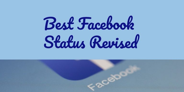 Funny Facebook Statuses Revised