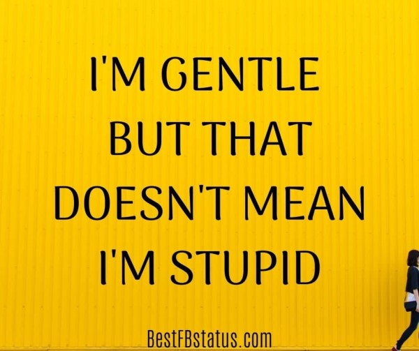 """Facebook best bio example: """"I'm gentle but that doesn't mean I'm stupid"""""""