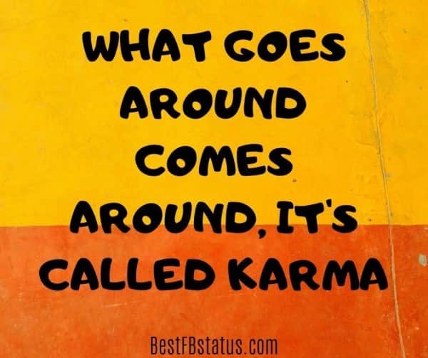 """bio in FB example: """"What goes around, comes around. It's called Karma"""""""