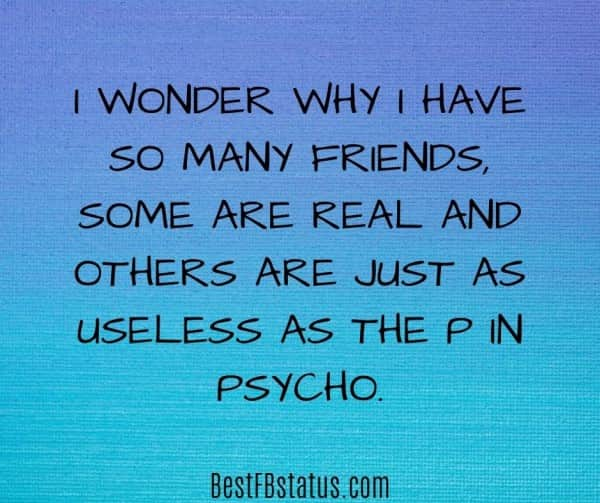 """new bio for fb example: """"I wonder why I have so many friends, some are real and others are just as useless as the P in Psycho"""""""